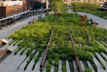 Public Spaces - Landscaping