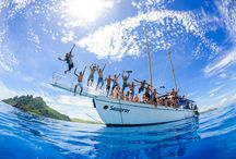 """Seaspray Sailing Adventure Day Trip in Fiji / A day on Seaspray, check out the island where Tom Hanks filmed the block buster """"Cast Away"""" movie.  Snorkel in stunning crystal clear water.  Pig out on board, plenty of food and drinks for everyone."""