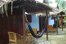 Hammocks of Costa Rica / Photos by Costa Rica real estate agents