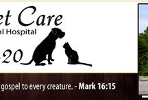 Tennessee Veterinarians Who Practice One or More Modalities in Holistic and Integrative Veterinary / http://www.bestcatanddognutrition.com/roger-biduk/list-of-900-u-s-holistic-integrative-veterinarians/