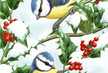 NOEL OISEAUX / Les oiseaux fêtent NOEL