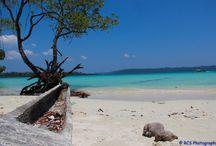 India's best beaches