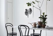 Tuoleja / chairs