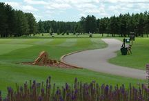 Golf | Wisconsin's Golf Capital ! / The Hayward WI lakes area is known as the Golf Capital of Wisconsin!