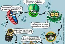 biologia!!