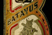 The history of Batavus