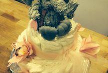Jungle Jill baby shower / Diaper Cake / by Trisha Peterson