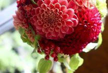 Jo flower / Japan design flower