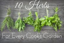 Ode to Herbs