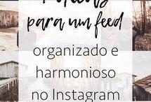 organizar feed
