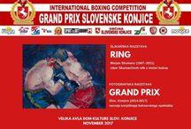 Grand Prix Slovenske Konjice 2017 (10/13 Nov 2017)