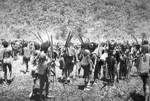 Stichting Papua Erfgoed
