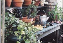 Gardening: Potting Places
