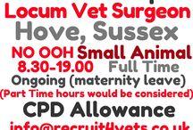 Vet Surgeon Jobs / #vet #surgeon #jobs through out the UK