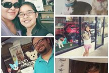 Rocky & Maggie's Customer Experiences / Customers and fans that enjoyed shopping with us!