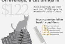 Veterinary Medicine & Related Pins