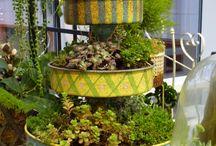 Garden ideas / Interesting ideas for the garden