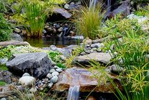 Water Features and ponds