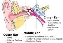 {SLP} Hearing / by Judy Deepe