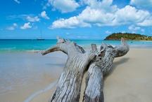 Beach, Ocean, Seaside