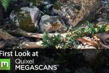 Quixel MegaScans