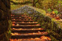 SCHODY_stairs / ...třeba vedou do nebe...