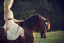 Arabian in western style!