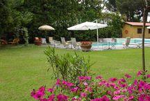 Vacation Villa Mary in Versilia, Tuscany / Elegant villa for special vacations in Tuscany.