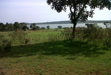 WaterFront Properties In Uganda / BUILD YOUR DREAM NEAR THE MAJOR RIVERS AND THE PARADISE OF LAKE VICTORIA