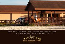 "Our Farm / Star Stables Miami is conveniently located at 11970 SW 64th Street, Miami, FL 33183; in the area known as ""Horse Country"". This zone is known for its strong agricultural community, and passion for animals. If you drive down the Horse Country streets you may see us on a trail ride, while you enjoy the fresh air and pleasant view of all kinds of horses. It is conveniently located a few minutes away off the Bird Road exit on the Turnpike highway. Please refer to contact us to schedule a visit!"