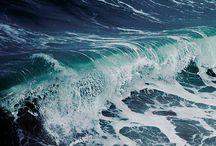 •ocean •