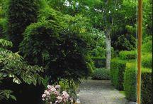 Garden/John Stefanides