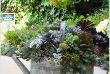 Deco au jardin