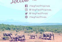 VegFest Pilipinas 2016