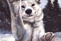 Волчатки