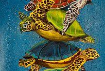schildpadden Daphne