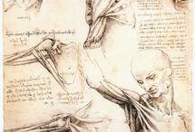anatómia - rajzok Da Vinci