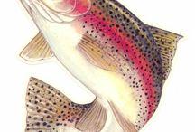 Modern Fish Art
