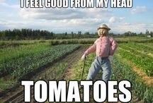 Farm Memes