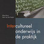 Intercultureel onderwijs (ICO)