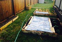Gardening in Idaho / My little raised bed vertical garden in northern idaho