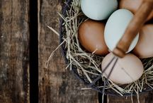 eggs -huevos