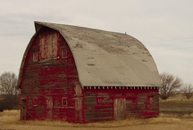 Barns  / by Rebecca