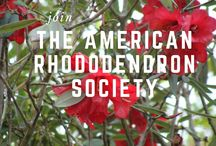 About the American Rhododendron Society