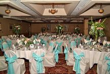 Reception Halls / Need to find the right place to have your reception? Check these great locations out.