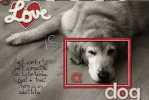 Scrapbook layouts - Dogs