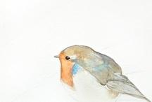 birdy / by Frances Raptopulos