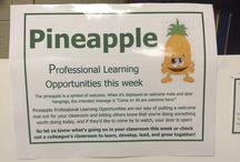 Pineapple PD