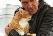 Famous People and their Cats