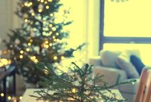 All Things Christmas / by Rabbit Ridge Farm (Jordan Charbonneau)